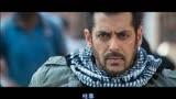 《老虎是活的》印度版的《战狼2》